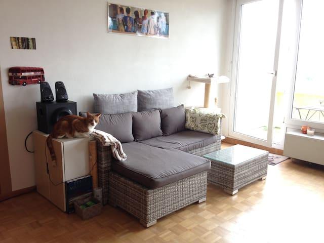 Grand studio - Thônex - Apartment