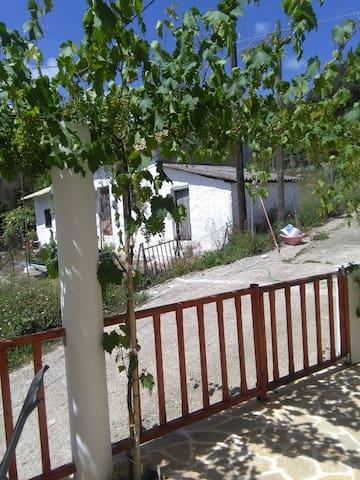 AMALIA HOUSE