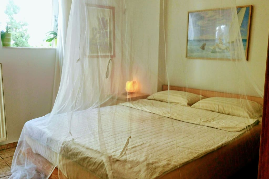 bedroom with mosquito net (removable)