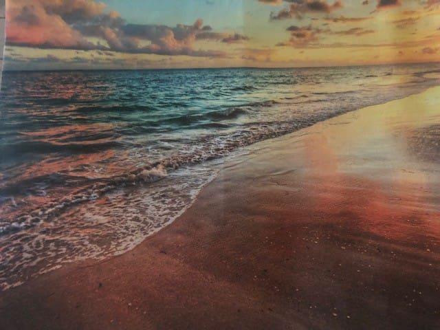 Paradise Beach/Park House , 1 min walk to Ocean!!
