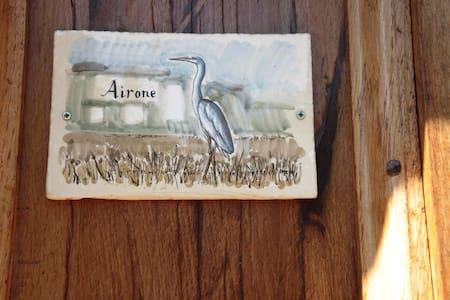 Airone - Urbino