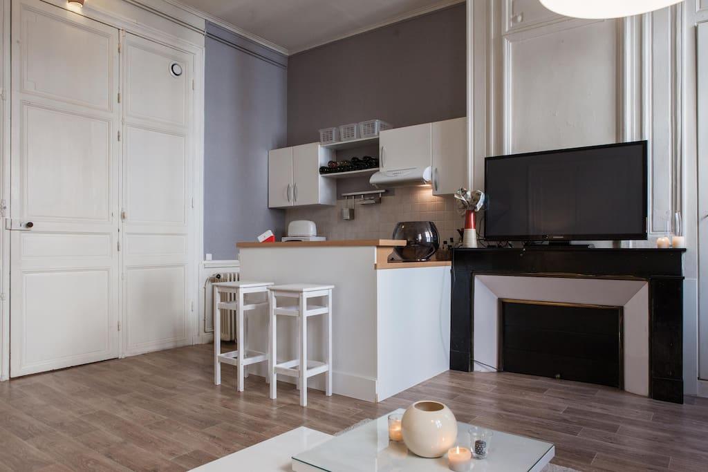 Grand salon- spacious living room (3)