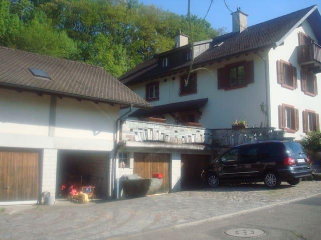 5 Zi-Haus. Bus nur 19' bis Basel! - Allschwil