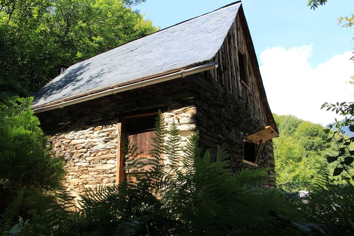 Mountain cabin French Pyrenees - Sentein - Stuga