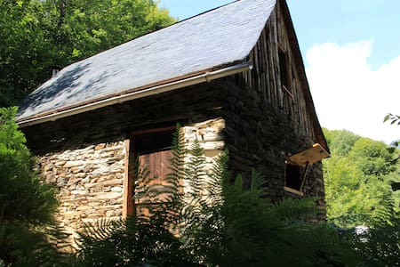 Mountain cabin French Pyrenees - Sentein - Chalet