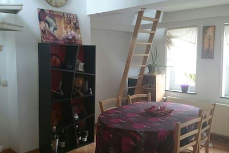 Bel appartement cosy à partager