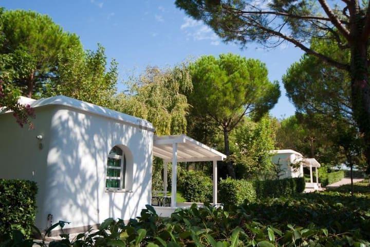 Garden - Bungalow - Sant'Andrea In Casale - Bungalow
