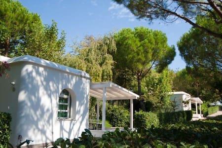 Bungalow nel verde - Sant'Andrea In Casale