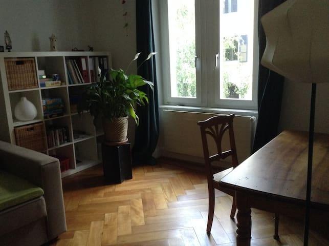 ruhiges Zimmer an guter Lage - Basel - Bed & Breakfast