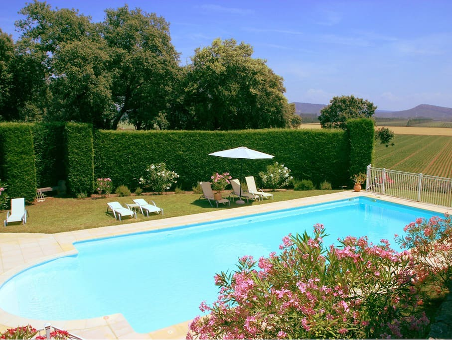 Pool with view to Mount Venteux