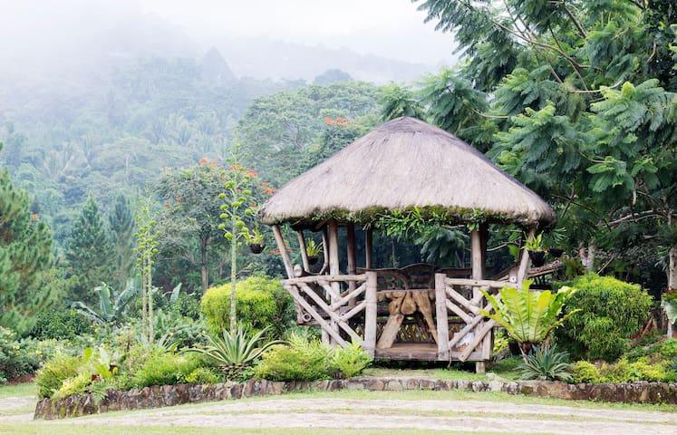 Mountain Vacation Home & Estate - Davao City - Villa
