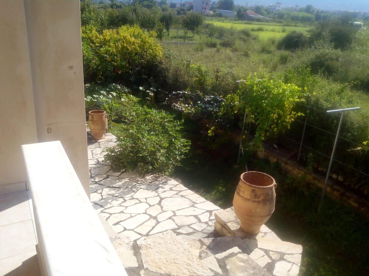 terrace near garden