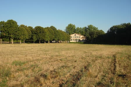 Charming house 3 km from Gaillac. - Brens - Bed & Breakfast