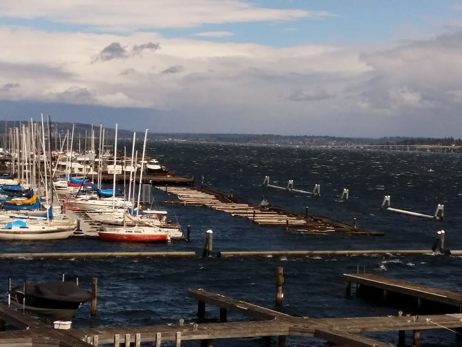Looking south from the deck to the Leschi marina.