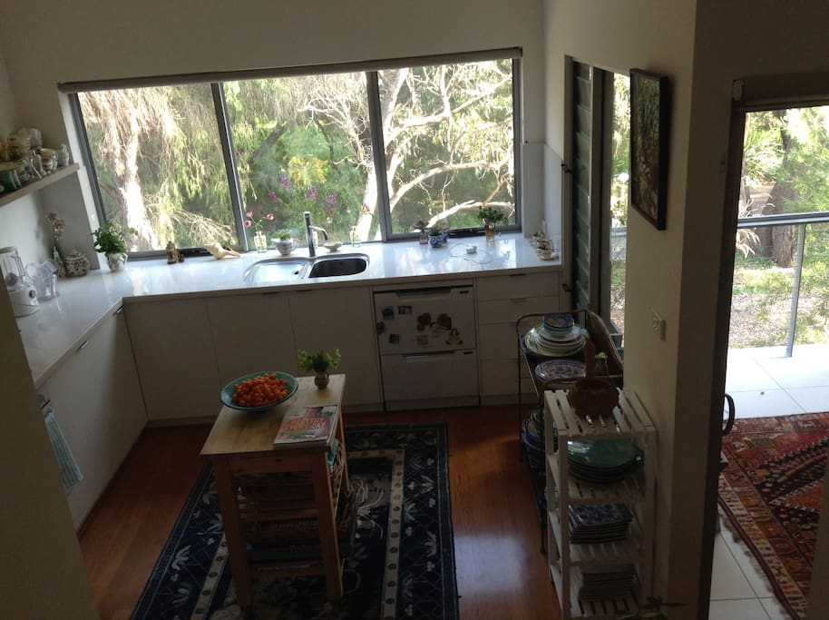 Kitchen overlooking bush and walk path down to the beach.