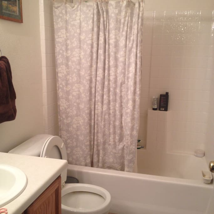 Bathroom with shower, towels, shampoo, and soap.