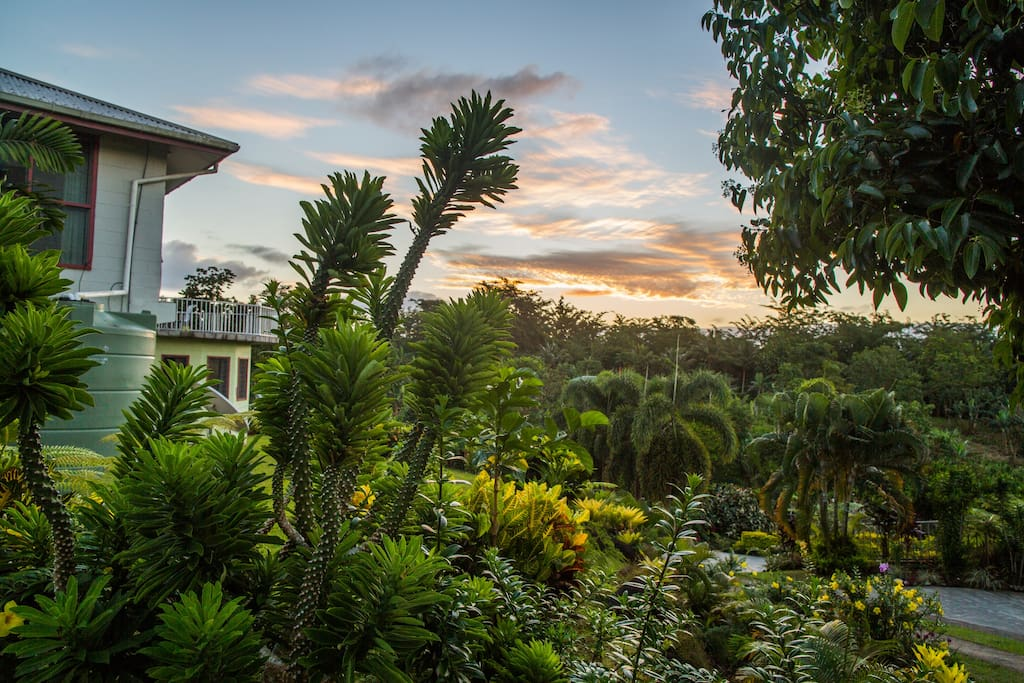 The lush gardens and plantations of the property.