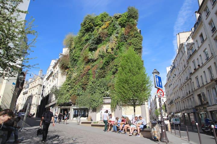 Hypercentral Paris apartment for 5/6