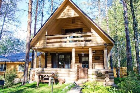 Дом на горнолыжном курорте - Vasilyevo