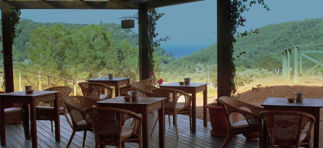 ALOE RANCH B&B Isola d'Elba - Rio Nell'elba - Bed & Breakfast