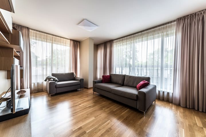 Excellent offer with a sunny terrace. Pets allowed - Rīga