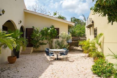 Studio Chuchubi in tropische tuin - Willemstad