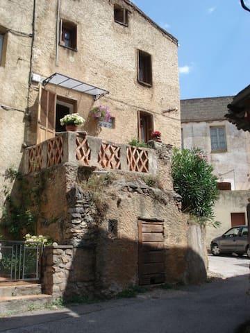 maison de village typique corse - Moltifao - House