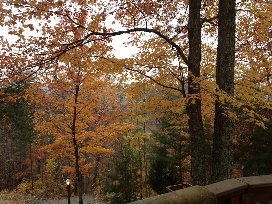 Beautiful, remote setting