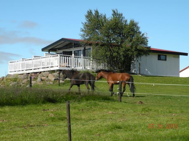 Horse Breeding Farm Jaðar - Selfoss - Bungalow