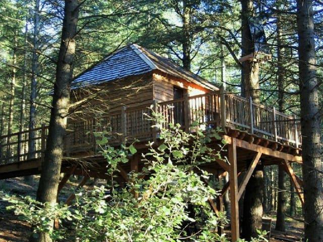 cabanes perchées des Fumades - Fournes-Cabardès - Blockhütte