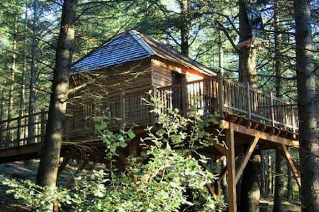 cabanes perchées des Fumades - Fournes-Cabardès - Cabana