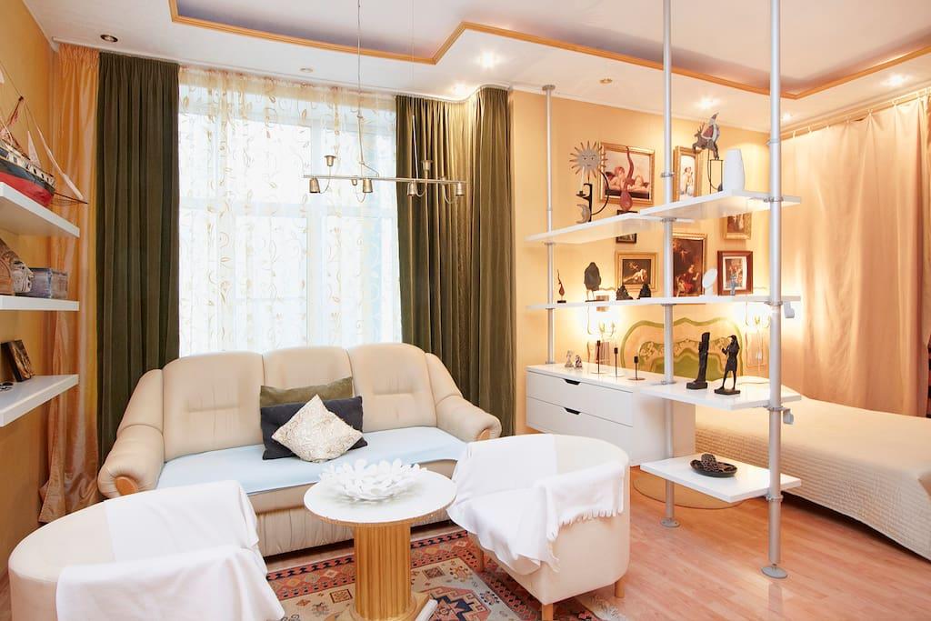 Раскладной диван на 2 ЧЕЛ. Используется данное место и как зона отдыха.