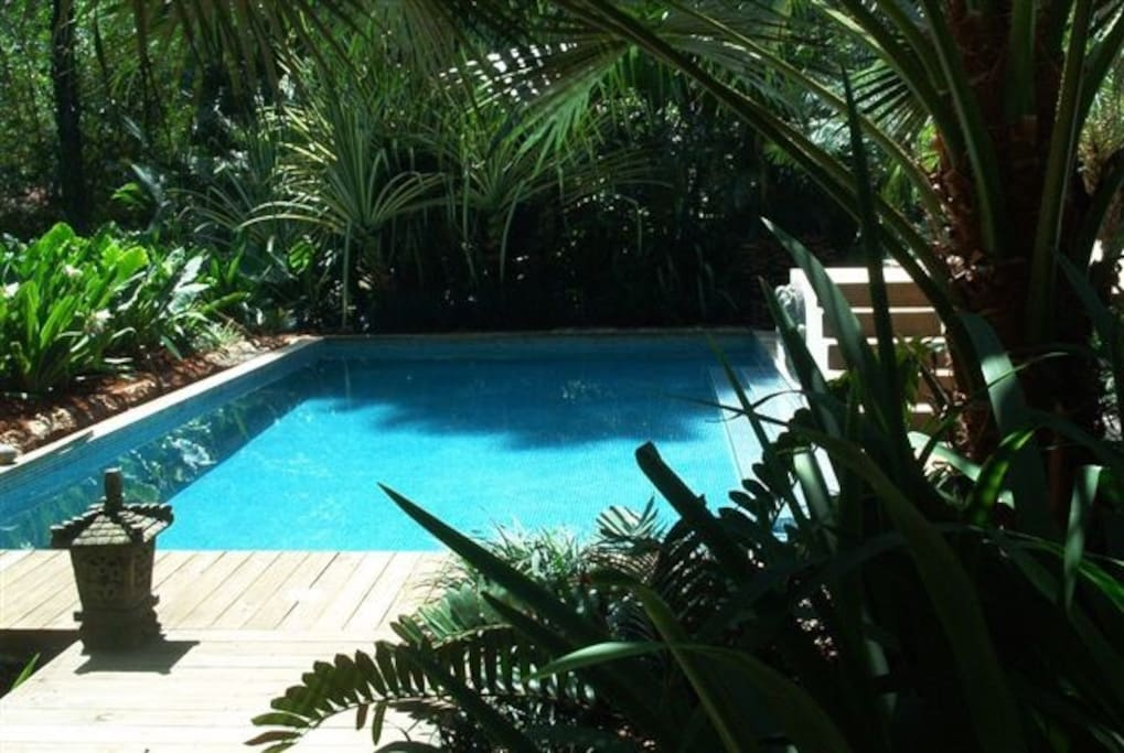 Pool is in front of main gathering area, surrounded by plants and trees, often howler monkeys will be in the tree tops overhead
