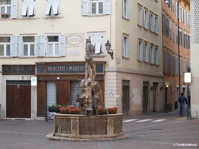 Casetta in Centro Storico - Rovereto