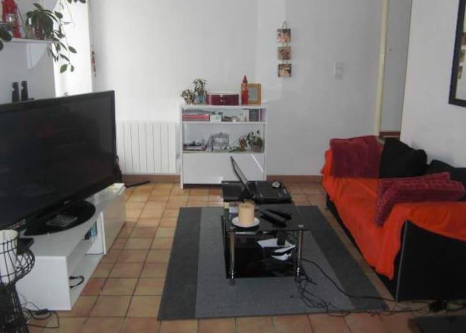 Le salon, avec wifi et Tv grand ecran