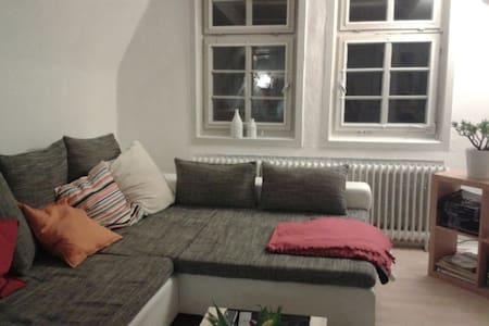 Zentrale Altbauwohnung mit Flair - Marburg - Apartmen