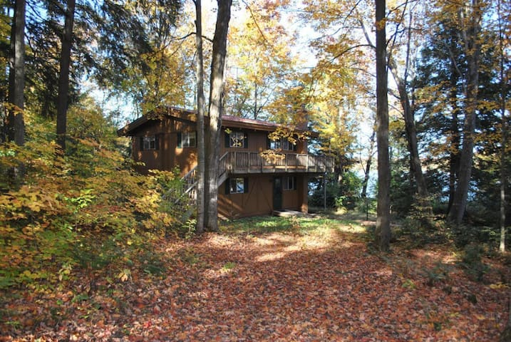 Gaylord Lakeside Cottage for rent - Gaylord - House