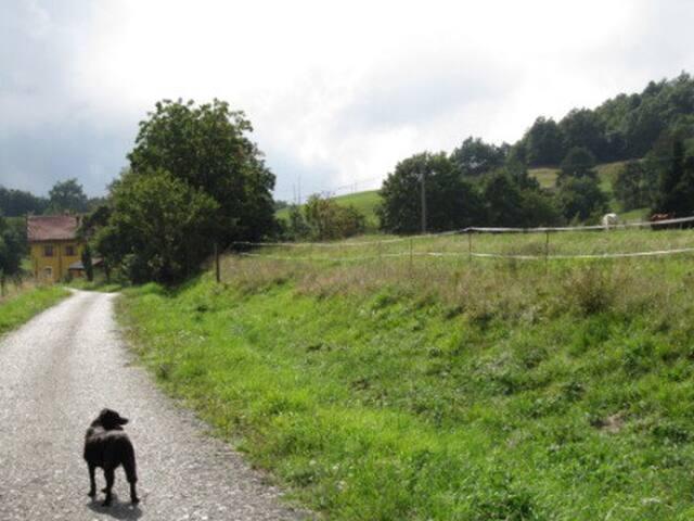 Capanne di Marcarolo (Natural Park) - Capanne di Marcarolo - Dom