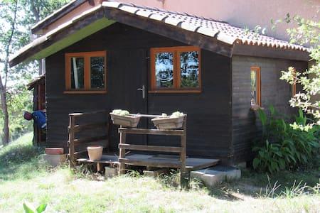 Chalet atypique en lisière de forêt - Saint-Rustice - Casa