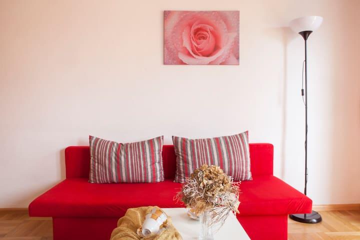 Zähringen Apartment - Freiburg - Huoneisto