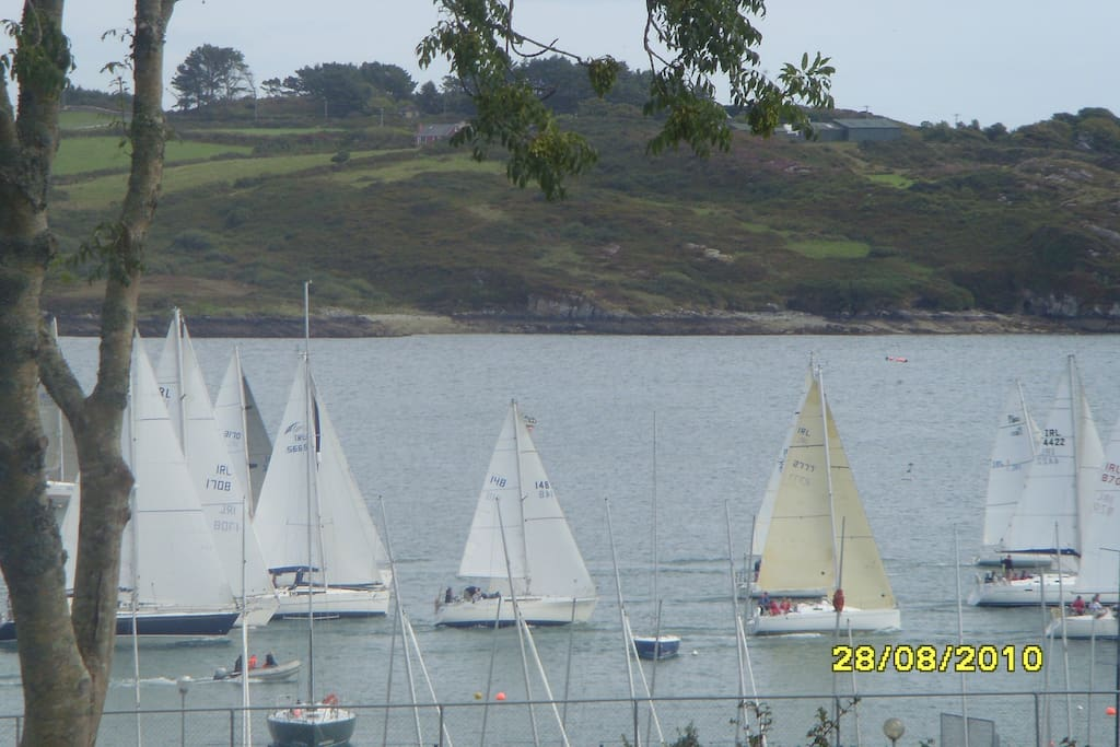 Schull Harbour sailing club race out the Harbour viewed from our house