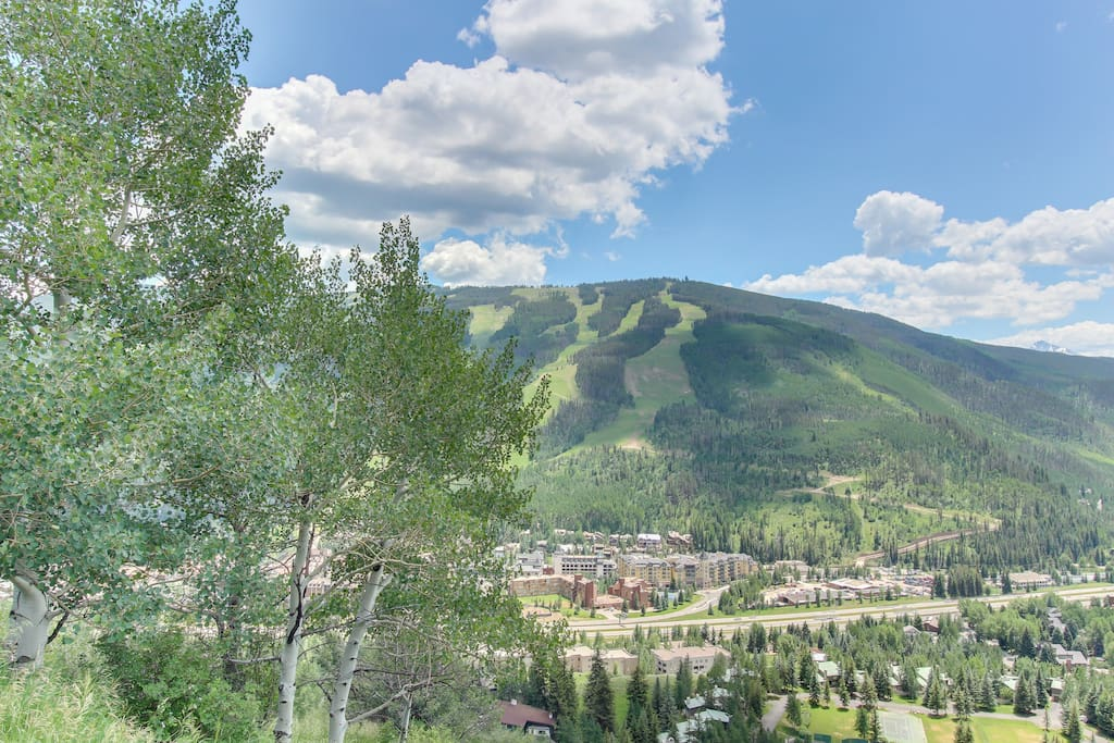 Potato Patch Luxury Retreat Houses For Rent In Vail Colorado United States