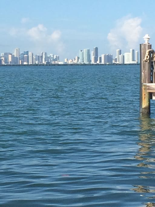 Miami skyline views from park close by
