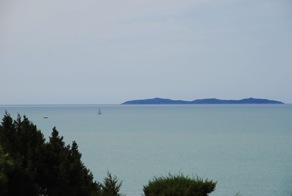 view of Giannutri island from up terrace of the house