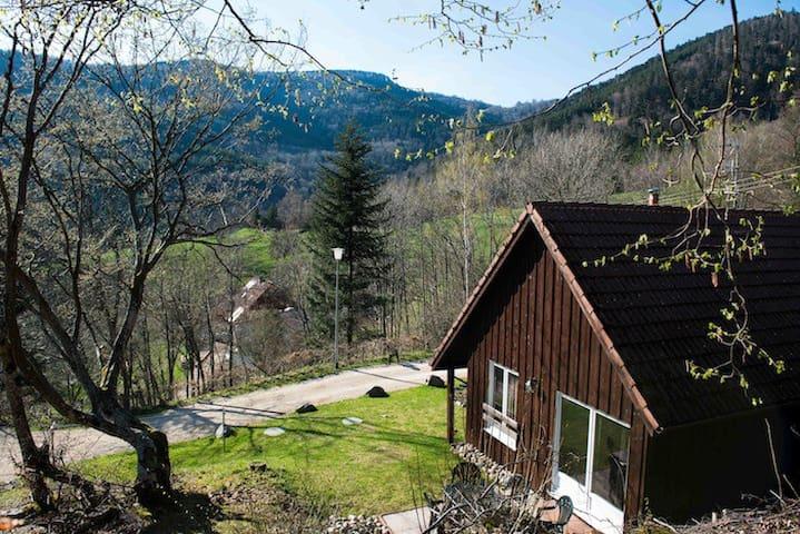 ALISIER - Gîte communal - Bourbach-le-Haut - Dağ Evi