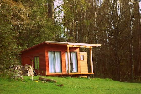 Cabin for 2 persons - Panguipulli