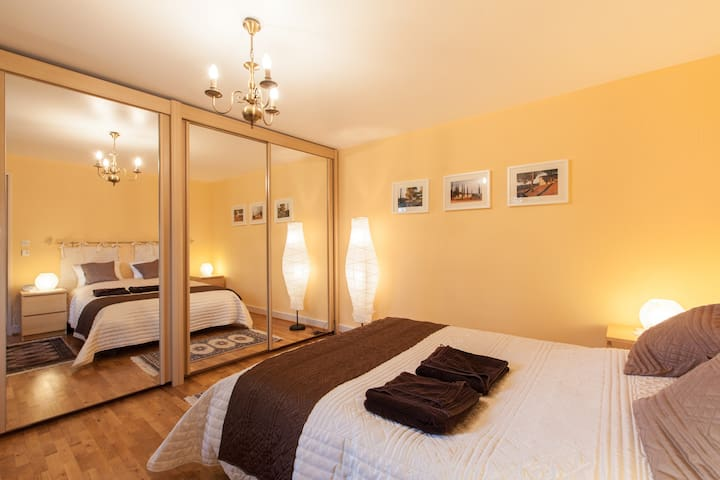 Visit, rest and enjoy in Alsace - Drusenheim - Apartemen
