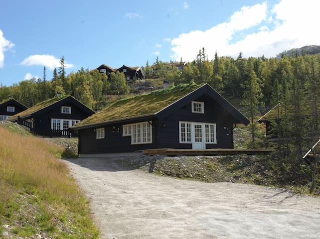 Mountain cabin/Högfjälls hytte - Tinn - Haus
