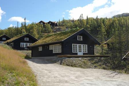 Mountain cabin/Högfjälls hytte - Tinn