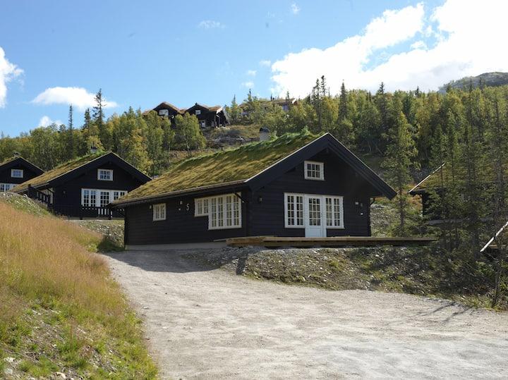 Mountain cabin/Högfjälls hytte